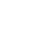 Logo Bois International